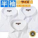 Yシャツ 半袖 3l 4l 5l 6l 大きいサイズ 半袖ワイシャツ カッターシャツ 大きい 白 無地 ボタンダウン ワイド レギュラー ビジネスシャ..