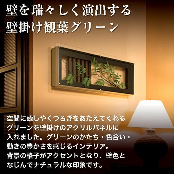 壁掛け 観葉グリーン☆GR3007 | おしゃ...の紹介画像3