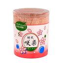 爪楊枝(つまようじ) ワンプッシュ容器 600本入