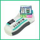 ネコポス可【鉄下】E233系 埼京線 くるぶし ソックス 靴下 サイズ 約16cm?20cm 新幹線