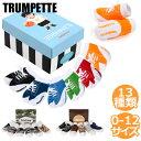 【会員別VIPクーポン配布中!】 トランペット ソックス 靴下 Trumpette JOHNNYS ジョニー ベビー ソックス [ 6足セット ] [ 0-12...