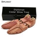 Diplomat02-1