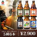 送料無料 ベアレン 工場直送 月替わり 地ビール クラフトビール 5種6本 詰め合わせ 飲み比べ セ ...