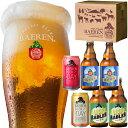 送料無料 ビール ギフト 4種6本 飲み比べ セット ベアレン醸造所 KB