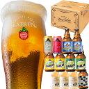 限定ビール7種12本 詰め合わせセット