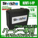 SKYRICH (スカイリッチ) リチウムイオンバッテリー ハーレー仕様 CCA550以上! 互換 ユアサ YIX30L YTX20L 65989-90B 65989-97A 65989-97B 65989-97C 66010-97C 66010-97B 66010-97A 66010-82B FTX20L-BS ハーレー Harley-Davidson BUELL 即使用可能