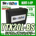 SKYRICH (スカイリッチ) リチウムイオンバッテリー ハーレー仕様 CCA550以上! 互換 ユアサ YTX20L-BS YIX30L 65989-90B 65989-97A 65989-97B 65989-97C 66010-97C 66010-97B 66010-97A 66010-82B FTX20L-BS ハーレー Harley-Davidson BUELL 即使用可能