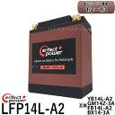 PERFECT POWER リチウムイオンバッテリー LFP14L-A2 互換 YB14L-A2 YUASA ユアサ FZX CB750 FZR750 CB750Four CB750F インテグラ カスタム FJ1100 XJ750 GSX750F/S/S カタナ GT750 EX-4 GPZ900Rニンジャ ZX-10