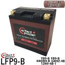 PERFECT POWER リチウムイオンバッテリー LFP9-B 互換 YUASA ユアサ YB9-B 12N9-4B-1 FB9-B DB9-B GM9Z-4B GB250クラブマン ベンリーCD125 VESPA PIAGGIO エリミネーター125(BN125A) VT250Z(MC08) VT250FE(MC08) VTZ250(MC15)
