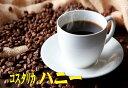 コスタリカ・ハニー200g【HLS_DU】10P03Dec16【RCP】