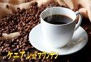 【お好みの焙煎します】ケニア レッドマウンテン 100g コーヒー 珈琲  Coffee【HLS_DU】10P03Dec16【RCP】