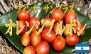 【お好みの焙煎します】フィンカ サンブラス オレンジブルボン 100g コーヒー 珈琲  Coffee【HLS_DU】10P03Dec16【RCP】