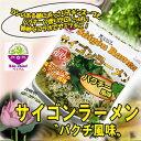 サイゴンラーメン パクチー風味 1袋(79.3g)×10袋セット 乾麺 インスタント 即席麺 香菜 コリアンダー ベトナム食品【あす楽対応】