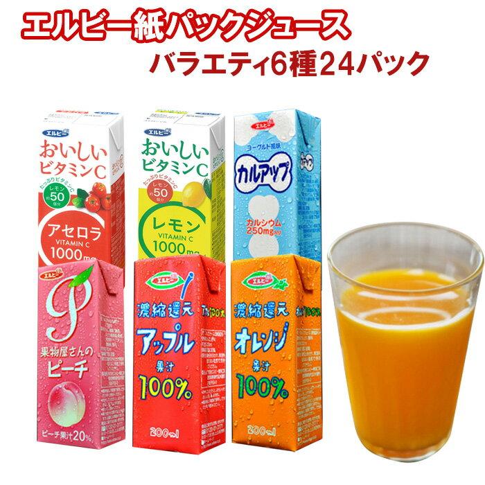 ソフトドリンク6種類24本セット(アセロラ・レモン・カルアップ・オレンジ100%・アップル100%・