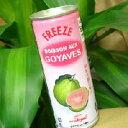 ピンクグアバジュース(250ml缶入り)X30本/ケース単位【送料無料】