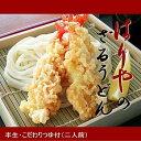 【送料無料】麺の力で勝負!はりやのさぬきざるうどん(讃岐うどん)20人前(2人前X10袋)