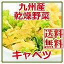 国産九州産乾燥野菜キャベツ 125g × 2 袋セット 送料無料(ゆうパケット便)