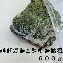 【業界ナンバーワン!!!】バドガシュタイン鉱石600g・ピカ子・天然石・テラヘルツ・デトックス・美容