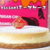 とりいさん家のCaramelチーズケーキ(4〜5人分)味わいのスイーツ ニューヨークチーズケーキ 濃厚 お菓子 デザート キャラメル 誕生日 ホールケーキ パーティー お取り寄せ バースデー 有名 ギフト 冷凍 子ども)