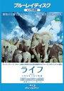 【中古】Blu-ray▼ライフ いのちをつなぐ物語 ブルーレイディスク▽レンタル落ち