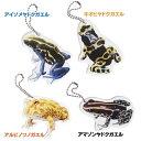 True frogs kh Tf-01 アイゾメヤドクガエル・キオビヤドクガエル・アルビノツノガエル...