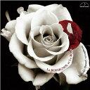器樂曲 - 【お取り寄せします 約7日間】ナイチンゲールとバラ 〜サクソフォン作品集〜 大森義基【サクソフォーン CD】MM-2083