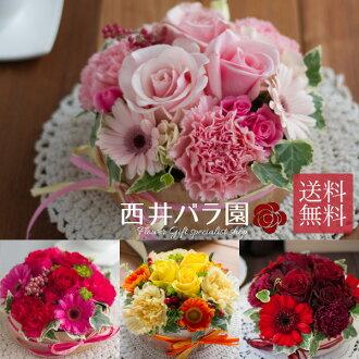 플라워 케이크 「M사이즈」선택할 수 있는 4색 3 사이즈 사진 송부 서비스로 안심!생일, 기념일, 결혼의 축하, 써프라이즈 기프트에.