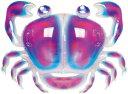 浮き輪 メンズ レディース キッズ スポーツ・アウトドア おもしろフロートシリーズ カニフロート おもちゃ・ホビー・ゲーム おもちゃ 水あそび 浮輪 ウキワ