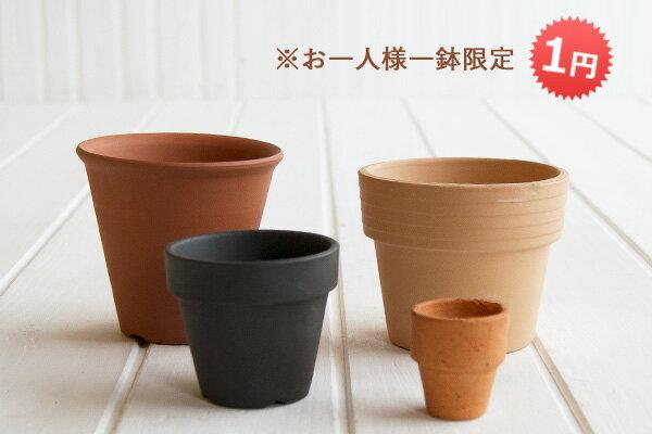 おしゃれで可愛いミニ素焼き鉢 ≪植木鉢/陶器鉢/テラコッタ/素焼き鉢≫