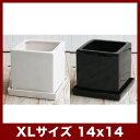 ルッカT.T HG14 5号受け皿付き   ≪植木鉢/おしゃれ/陶器鉢/白黒磁器系≫