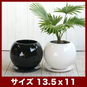 ルッカT.T HG17 4号受け皿付き   ≪植木鉢/陶器鉢/白黒磁器系≫