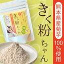 菊芋粉末 100g 熊本県産 酵素栽培 腸内フローラ 有胞子菌を含む善玉菌 シンバイオティクス食品