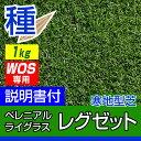 ペレニアルライグラス レグゼット 1kg入り お庭の広さ5?12坪用 バロネス寒地型芝の種 短年草