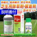 ゴルフ場も使用の芝生用除草剤・展着剤3点セット(高麗芝、姫高麗芝、野芝専用) ザイトロンアミン液剤・グリーンアージラン液剤・サプライ/あす楽対応/