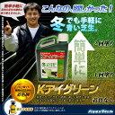 芝生用着色剤 バロネス Kアイグリーン 1kg/あす楽対応/共栄社/