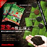 韩国比BEMASHITA的第一次尝试了不同的经理。创建一个生动的绿色,土壤床土壤草坪与男爵夫人一○公[【レビュー特典あり】【送料注意】ランキング1位の常連!鮮やかな緑をつくる、バロネス 芝生の目土・床土 10kg入り