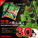 【送料無料】楽天ランキング1位の常連!鮮やかな緑をつくる、バロネス 芝生の目土・床土 10kg入り(16リットルサイズ)×30袋セット【共栄社】