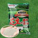 /焼砂/バロネス 芝生の目砂・床砂 10kg×1袋 珪砂 遠州砂 焼き砂 乾燥砂