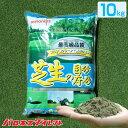 /洗砂/バロネス 芝生の目砂 床砂 10kg×1袋 珪砂 遠州砂 洗い砂 湿った砂【店頭受取対応商品】