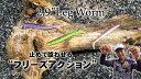 ゲーリーヤマモト 2.9インチ レッグワーム J80L 【メ...