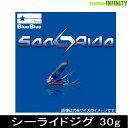 ●Blue Blue ブルーブルー シーライドジグ 30g 【メール便配送可】【swjig】