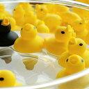 バストイ/あひる風呂【おもちゃ アヒル あひる お風呂で遊ぶ...