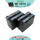 ★送料無料★【あす楽対応】2個セットSONY NP-F960 NP-F970 互換バッテリー 大容量業務用にも! ハンディカム/カムコーダー VCL-ES06A DCM-M1 MVC-CD1000 FDR-AX1 Q002-HDR1