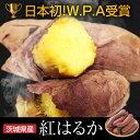 さつまいも 5kg 訳あり【日本初のW.P.A受賞の究極のさつまいも】 B品 紅はるか 焼き芋にも最適 スイーツのような甘み プチギフト