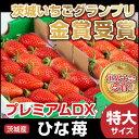 いちご スイーツ ひな苺 プレミアムデラックス 大粒 苺 ストロベリー プチギフト 高級