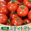 トマト フルーツトマト「完熟ミディトマト」1.5kg ギフト プチギフト トマトジュース にも 最適な フルーツトマト 食塩無添加