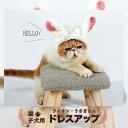 猫 子犬用 ドレスアップ ライオンのたてがみ 白いウサギ コスプレ ドックウェア ハロウィン クリスマス
