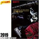 3240円で送料無料 2019 ゼット 野球・ソフトボールカタログ