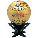 最大10%引クーポン ミズノ 野球 ボールK1・K2用飾り台(ボールは付属しません) 2ZO305 メール便可
