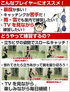 """室内での使用もOK!<野球練習用品>軟式守備練習用ネット""""スナップ&スロートレーニングネット""""byフィールドフォース"""